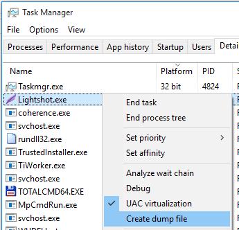 Task Manager Dump Screenshot